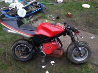 Mini moto bike Cheap.