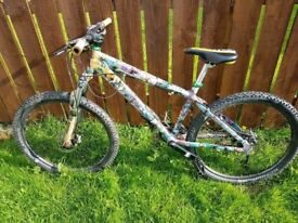 Comic Book Mountain Bike (customised)