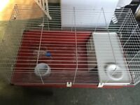 Used indoor guinea pig cage