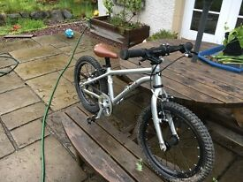 Early Rider Chrildrens Bike