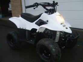 Quad Bike (Junior) White. Thundercat 110cc. As New (unused)