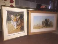 Wild Animals Canvas (£40 for both)