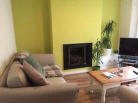 Double room near Lark Lane in beautiful house