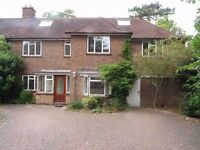 Amazing 7 Bedroom Semi-detached House in on North Down Road, Sutton, £2600PCM