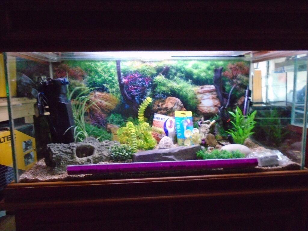 For sale 150 litre custom built fish tank aquarium with for Custom fish tanks for sale