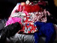 Bargain Bundle Girls clothes age 11-12