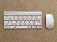 Apple Magic Keyvoard and Magic Mouse