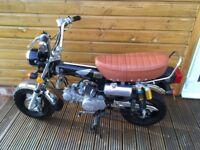 Jincheng Monkey Bike