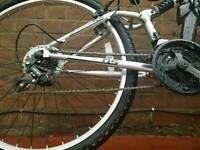 Dunlop DS Bike