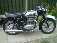 BSA A50 500cc stunning