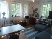 Lovely bright 2 double bedroomed 1st floor mansion flat. Set within 5 minutes walk(appriox) of Hig