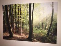 Large Woodland canvas print