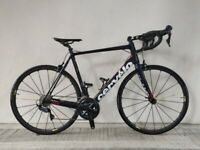 NEW, (4106) 700c 58 cm CERVELO R3 ULTEGRA Carbon ROAD BIKE BICYCLE RACER Size: L, Height: 175-190cm