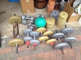 Training Weights