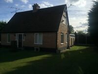 Large double Room £160 per week to rent in an immaculate shared house