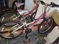 Pink ladys Bike TREK 220 ALIMINIUM,WAS £350, NOW £50. Delivery is availableJust been serviced.