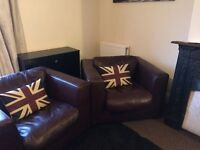 2 leather armchairs - chocolate brown