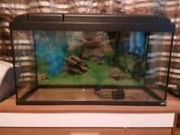 Fish tank + filter + heater