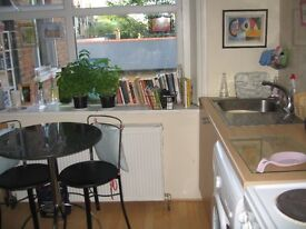 Lovely STUDIO with separate kitchen in Highgate, London N6