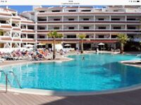 lovely apartment - Paloma Beach - Tenerife