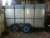 Ifor Williams Livestock Trailer - Sheep/Cattle etc