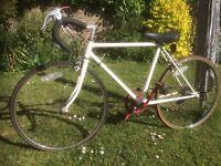 "Retro, old school, boys ""Racer"" bike. 24"" wheels."