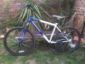 Muddyfox 21 Speed Mountain Bike