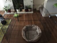 Dog Pen with door