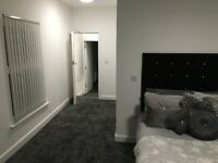 Fully Refurbished Professional Property Share