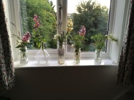 70 lace covered glass jars and bottles. Use for flowers at weddings, celebrations