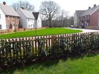 Urgent need to swap lovley new 3 bed home in quite country tow of Northiam