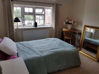 Lovely double room in Botley house share