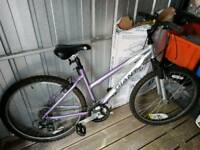 Female Giant Rock 21 speed mountain bike