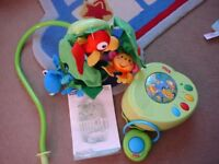 Fisher Price Rain Forest peek-a-boo leaves musical mobile.