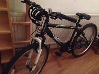 **Good Condition APPOLO MOUNTAIN BIKE+PUMP+LOCK** 3 in 1 only £69