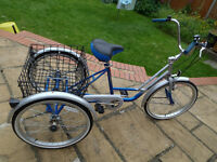 ADULT TRICYCLE MISSION TRILOGY TRIKE BLUE & SILVER