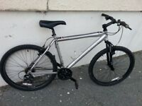 Diamond Back mountain bike adult size