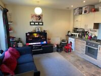 Spacious one bed flat loxford lane part dss welcome