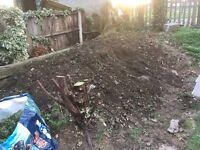 Free soil garden outside