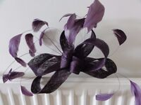 Purple Coast Fascinator