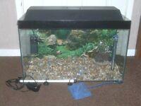 FISH TANK WITH HOOD LED LIGHT PUMP FILTER HEATER £45