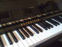 Enjoy piano lessons with an experienced piano teacher