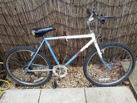 MANS BIKE NEEDS SOME TLC BUT HAS BRAND NEW TYRES AND INNER TUBES