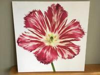 Flower Canvas Print (60 x 60cm)