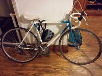 Raleigh Esprit vintage 12 speed road racing bike small / womens
