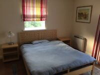 King Size room with en suite