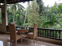 Amazing holiday home in Bali (Ubud), jungle and river sanctuary for 2 with breakfast £145
