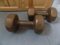 Pair of free weights