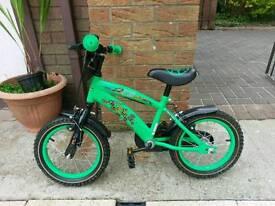 Boy's Bike Teenage Mutant Ninja Turtles