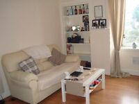Centrally Located One Bedroom Flat, Lounge/Kitchen, One Bedroom and Shower Room